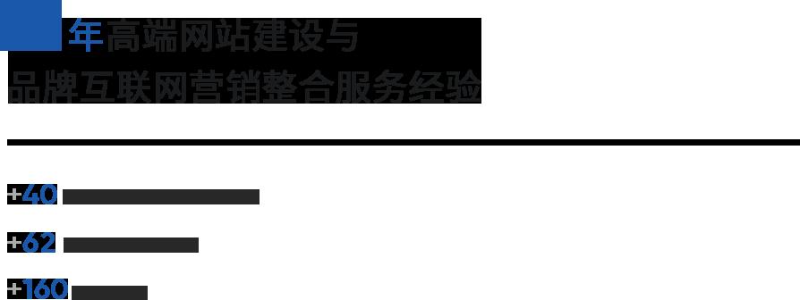 12年专业网站建设与网站设计服务